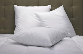 Feather & Down Pillow